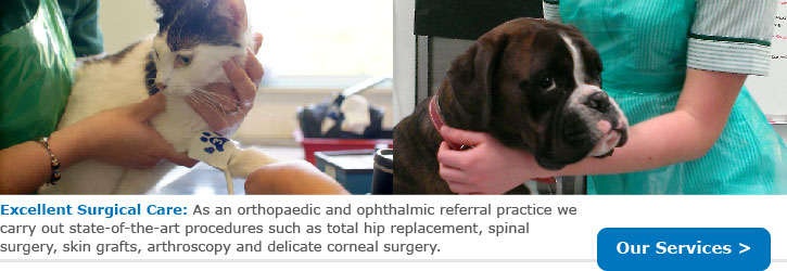 Excellent Surgical Care: As an orthopaedic and ophthalmic referral practice we carry out state-of-the-art procedures such as total hip and elbow replacement, arthroscopy, spinal surgery, skin grafts and delicate corneal surgery.