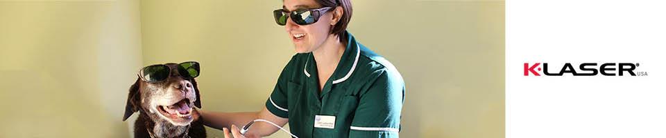 Macqueen Vets nurse administering K-Laser pain-relief treatment