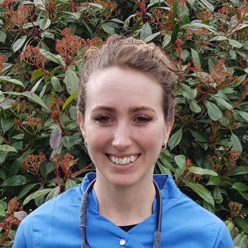 Dr. Carly Smith, keyhole laparoscopic spays